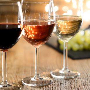 Šta se dešava kada počnete da učite o vinu?